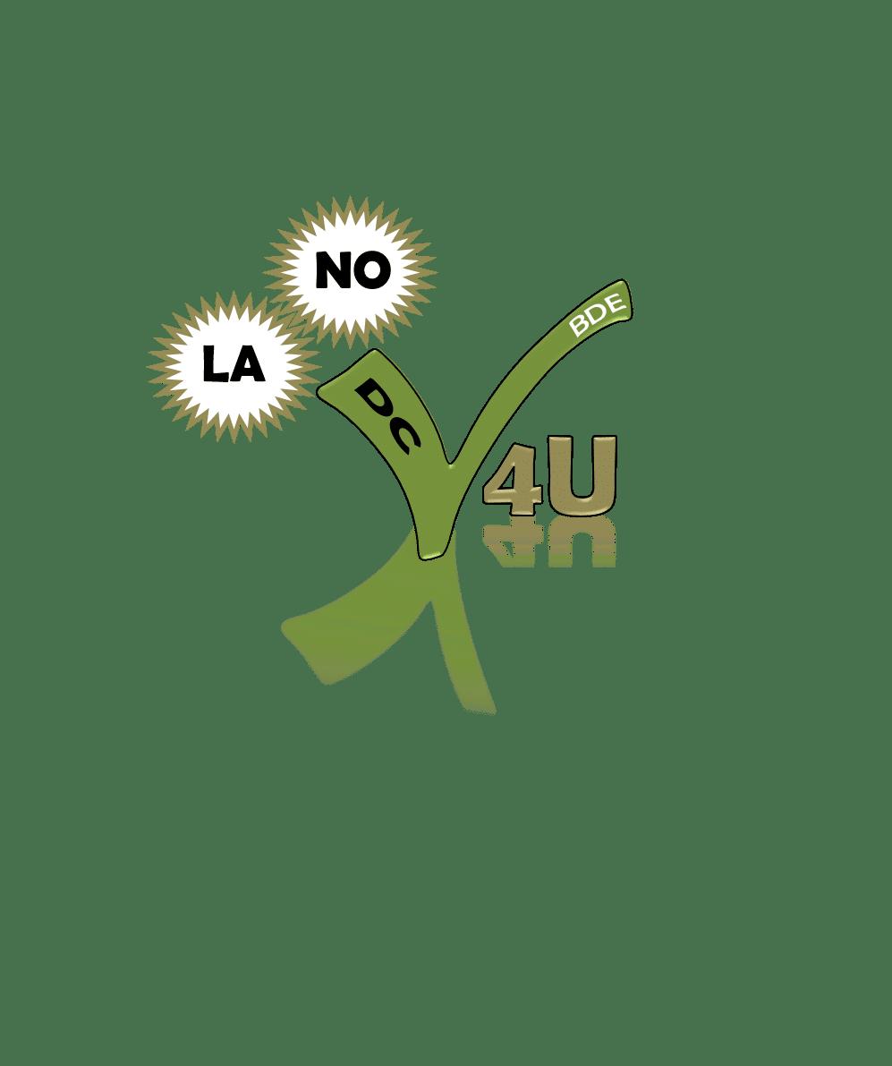 2019_06_03_LANO_Logo